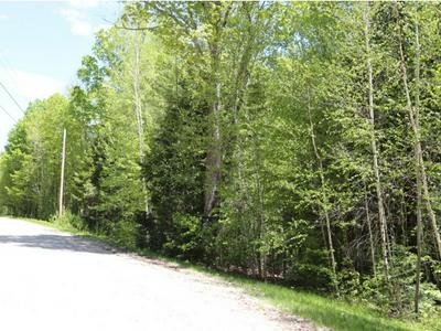 0 PATTERSON ROAD, Wilmot, NH 03287 - Photo 1