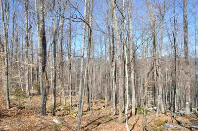 000 OLD TOWN ROAD, Ripton, VT 05766 - Photo 2