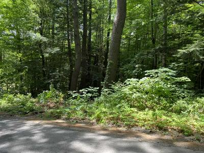 0 POOCHAM ROAD, Chesterfield, NH 03466 - Photo 2