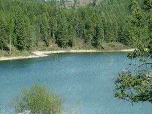 1312 PINGSTON CREEK RD, Kettle Falls, WA 99141 - Photo 1
