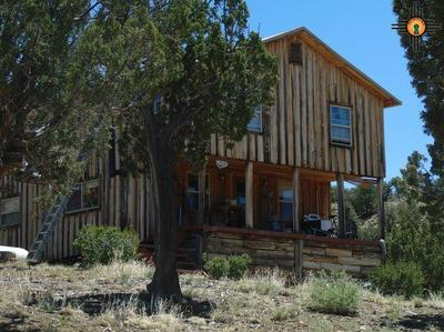 2324 CRISWELL RD, Datil, NM 87821 - Photo 2
