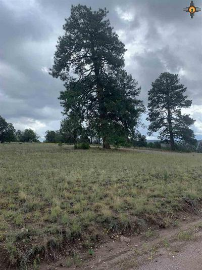 26 HAMPTON RD, Reserve, NM 87830 - Photo 2