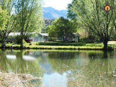 7 LONE PINE DR, Glenwood, NM 88039 - Photo 1