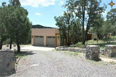 11 MOUNT OLYMPUS RD, Silver City, NM 88061 - Photo 2