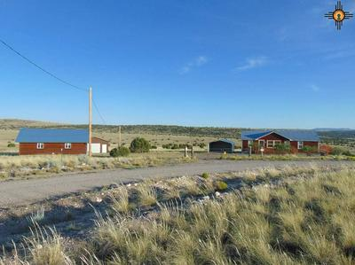 20 ANTELOPE WAY, Quemado, NM 87829 - Photo 2