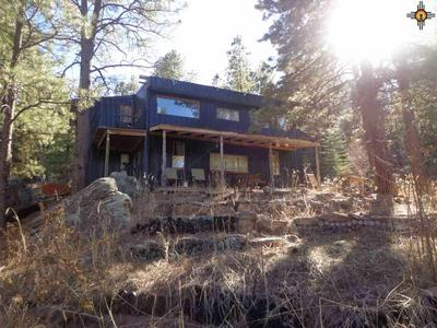111.28 AC COUNTY ROAD A4A, Sapello, NM 87745 - Photo 1