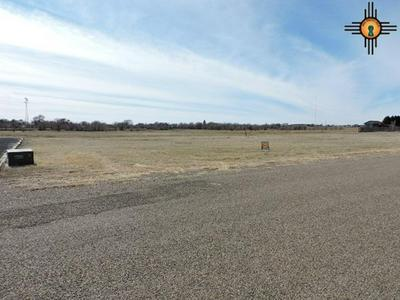 8 JENKINS RD, Clayton, NM 88415 - Photo 1