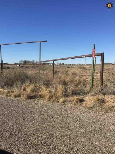 417 PETREE RD, Hagerman, NM 88232 - Photo 2