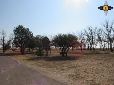 1618 CURRY ROAD H, Clovis, NM 88101 - Photo 2
