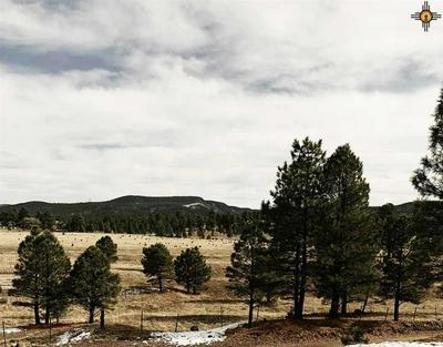 108 OLD SAWMILL RD., Luna, NM 87824 - Photo 1