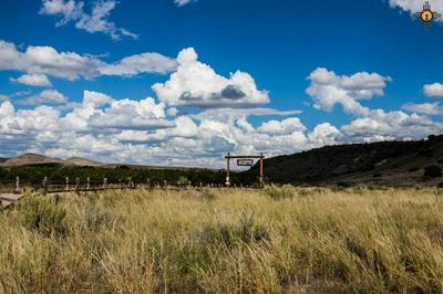 XX E BERRENDA ROAD, Hillsboro, NM 88042 - Photo 1