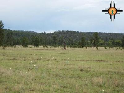 183 LUNA VALLEY DRIVE, LUNA, NM 87824 - Photo 2