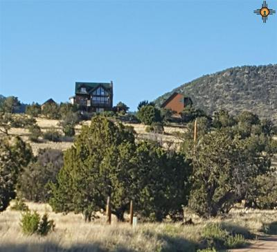 27 METATE LN, Datil, NM 87821 - Photo 2
