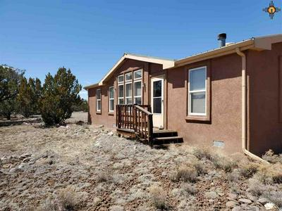 127 CATTLE TRACK RD, Quemado, NM 87829 - Photo 1
