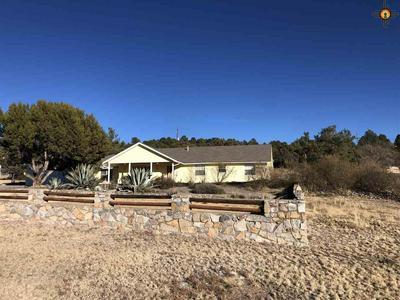 3980 PITCHFORK RANCH RD, Silver City, NM 88061 - Photo 2
