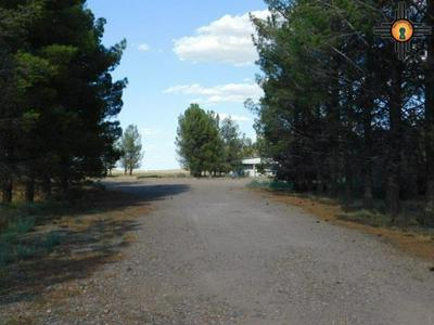4095 VIDALIA RD SW, Deming, NM 88030 - Photo 2
