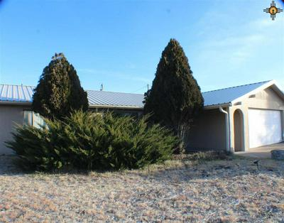 4128 N BLACKHAWK RD, Silver City, NM 88061 - Photo 1