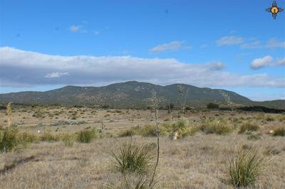 XXX MARGUERITE, Silver City, NM 88061 - Photo 1