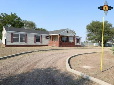 152 NM HIGHWAY 88, Portales, NM 88130 - Photo 2