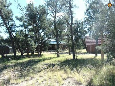 17 ELK VIEW CIR, Quemado, NM 87829 - Photo 2