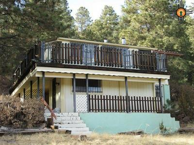 1137 STATE HIGHWAY 518, Sapello, NM 87745 - Photo 2
