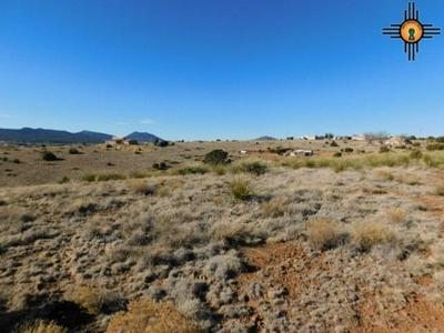 SUMMIT RD, Silver City, NM 88061 - Photo 1