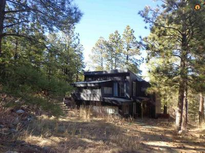 111.28 AC COUNTY ROAD A4A, Sapello, NM 87745 - Photo 2