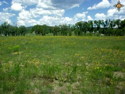 OLD SAWMILL RD., LUNA, NM 87824 - Photo 1