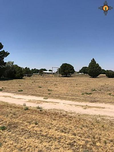 549 NEW YORK DR, Portales, NM 88130 - Photo 2