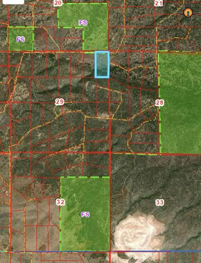 135-B ELK SPRINGS ROAD, El Morro, NM 87321 - Photo 2
