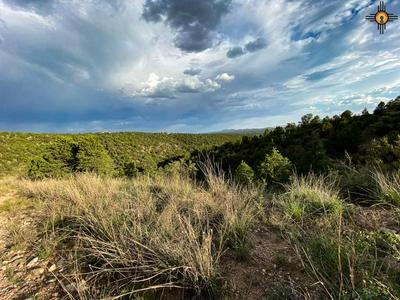 XX N FLEMING TANK ROAD, Silver City, NM 88061 - Photo 2