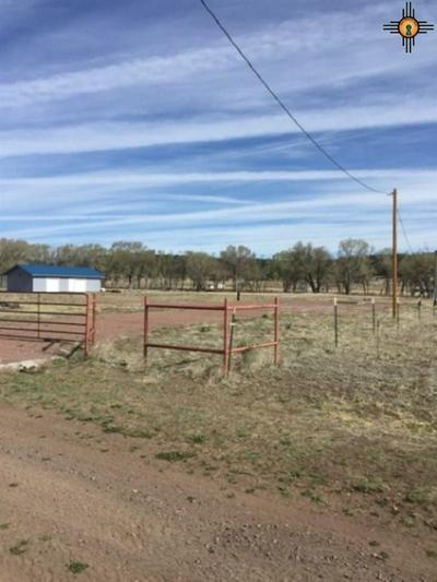 15 FRIDEN RD, Luna, NM 87824 - Photo 1