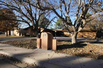 718 W AVENUE B, LOVINGTON, NM 88260 - Photo 1