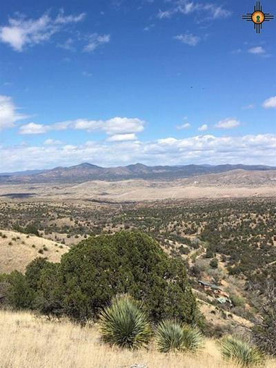 59 RAFTER D DR, Silver City, NM 88061 - Photo 2