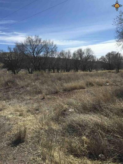 930 GRAFTON RD, Winston, NM 87943 - Photo 1