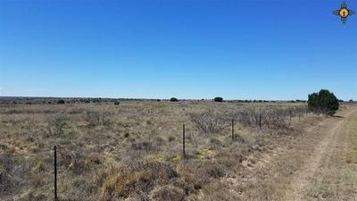 TBD STATE ROAD 203, Fort Sumner, NM 88119 - Photo 2