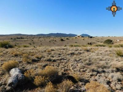 SUMMIT RD, Silver City, NM 88061 - Photo 2