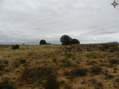 00 RIVER RANCHES ROAD, Fort Sumner, NM 88119 - Photo 1