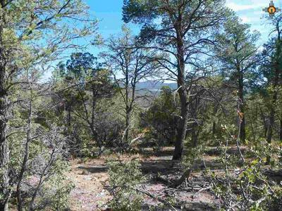 30 RIVERS WEST DR, Reserve, NM 87830 - Photo 1