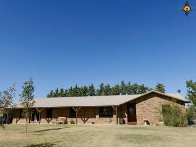824 NM HIGHWAY 88, Portales, NM 88130 - Photo 1