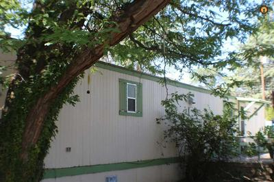 2026 N SILVER ST, Silver City, NM 88061 - Photo 1