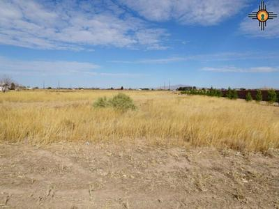 00 SOLANA ROAD SW, Deming, NM 88030 - Photo 2