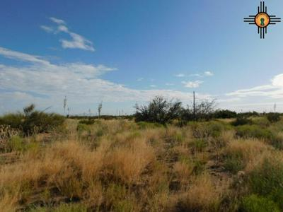 CALLE DE RANCHERO SW, Deming, NM 88030 - Photo 2