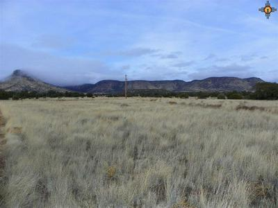 464 SOUTHERN TRL, Datil, NM 87821 - Photo 1