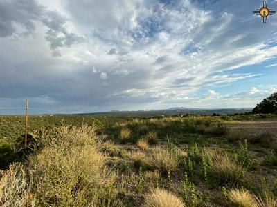 XX N FLEMING TANK ROAD, Silver City, NM 88061 - Photo 1