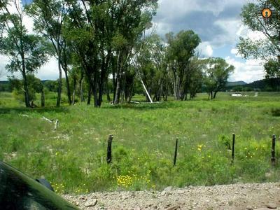 15 ROMNEY RD, LUNA, NM 87824 - Photo 2