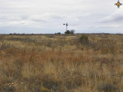 0 RIVER RANCHES ROAD, Fort Sumner, NM 88119 - Photo 1