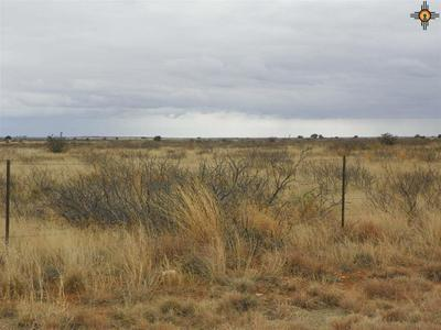 0 RIVER RANCHES ROAD, Fort Sumner, NM 88119 - Photo 2