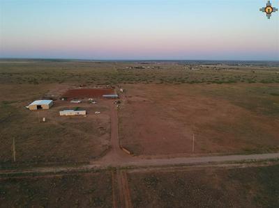 11115 540 LOOP, Logan, NM 88426 - Photo 2
