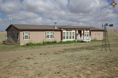 1305 COUNTY ROAD, Springer, NM 87747 - Photo 1
